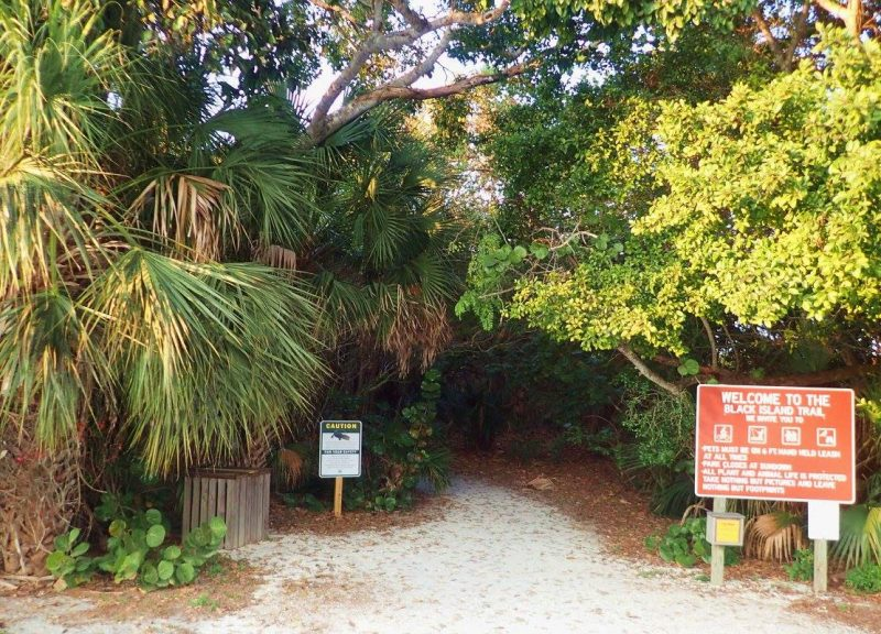 Entrance to Black Island Trail in Lovers Key State Park