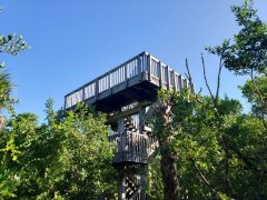 Observation Tower at Delnor Wiggins Boardwalk Trail